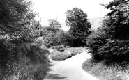 Moorsholm photo