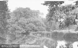 Morden, The River, Morden Hall c.1955