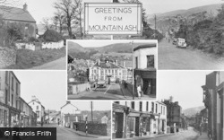 Mountain Ash, Composite c.1955