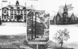 Mountain Ash, Composite c.1960