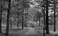 Mountain Ash, Duffryn Woods c1955