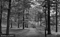 Mountain Ash, Duffryn Woods c.1955