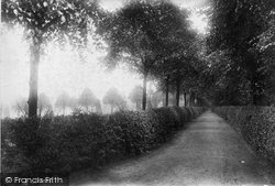 Abbey, The Linden Walk 1904, Much Wenlock