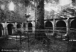 Muckross, Abbey, Cloisters 1897