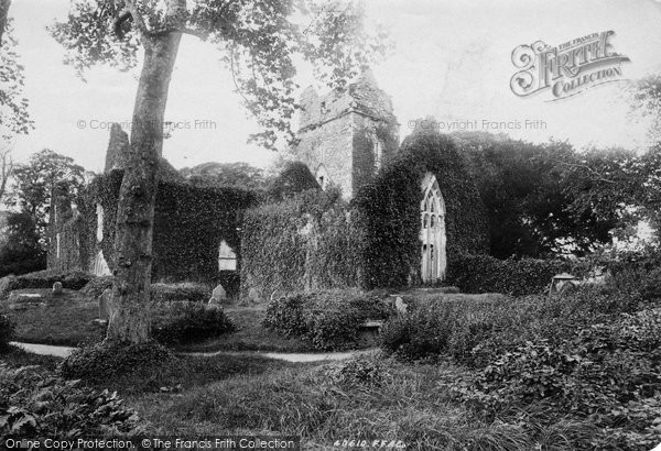 Photo of Muckross, Abbey, South West 1897