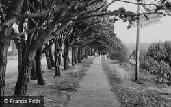 The Cliff Path c.1955, Mudeford