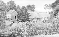 Musbury Farm c.1955, Musbury