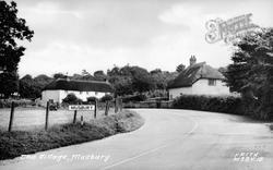 The Village c.1955, Musbury