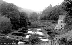 Nailsworth, The Trout Hatcheries c.1955