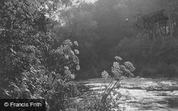Riverside Beauty c.1929, Nairn
