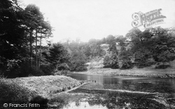 Neath, Gnoll Woods, The Pond 1898