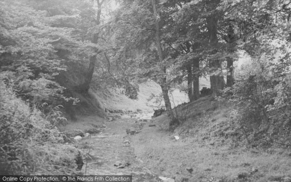 Photo of Nelson, Catlow Bottoms 1957