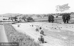 General View c.1955, Nether Stowey