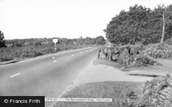New Forest, The Bournemouth Road c.1960