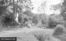 New Radnor, The Dingle 1950
