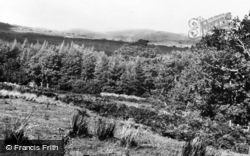 Newcastle, Tollymore Park c.1960