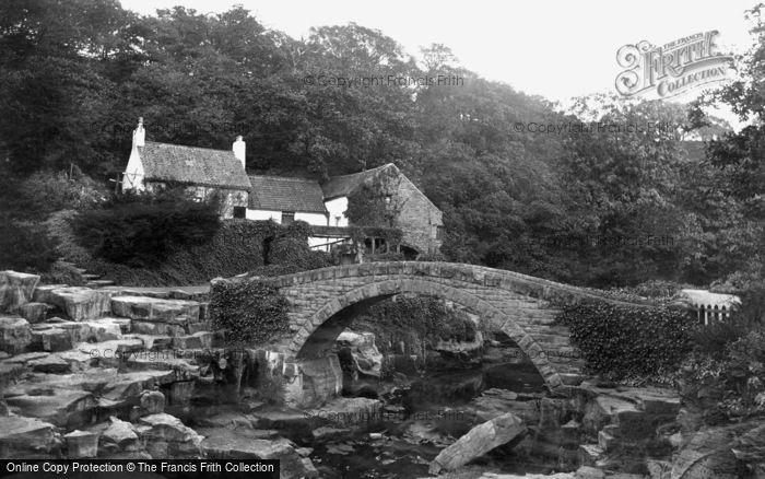 Photo of Newcastle Upon Tyne, the Mill and Bridge, Jesmond Dene 1888, ref. 21045
