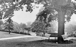 Newport, Belle Vue Park c.1955