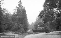 Chetwynd Firs c.1955, Newport