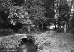 Newton Abbot, Bradley Woods 1890