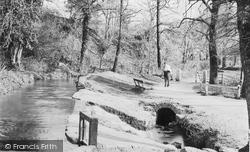 Newton Abbot, Bradley Woods 1914