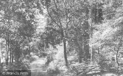 Newton Abbot, Milber Woods 1896