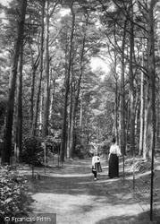 Newton Abbot, Milber Woods Avenue 1907
