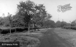 Newton On Ouse, Cherry Avenue c.1955, Newton-on-Ouse