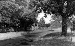 Newton On Ouse, Cherry Avenue c.1955