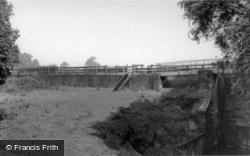 Newton On Ouse, River Bank c.1955, Newton-on-Ouse