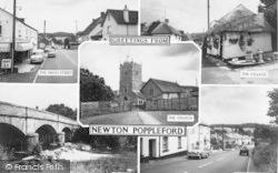 Newton Poppleford, Composite c.1960