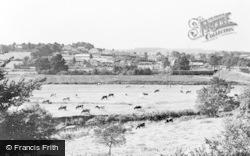 Newton Poppleford, General View c.1960