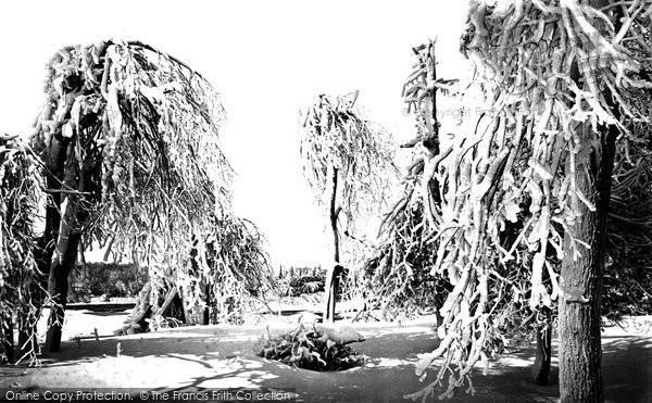 Photo of Niagara, Luna Island, Ice Trees c.1872