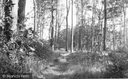 Nonington, Fredville Park c.1955