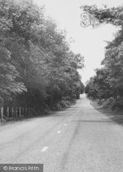 Norley, Delamere Forest Road c.1955