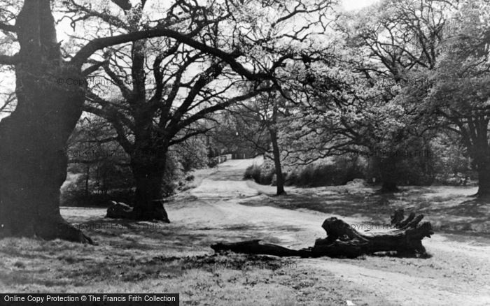 Photo of North Chingford, Epping Forest c.1955