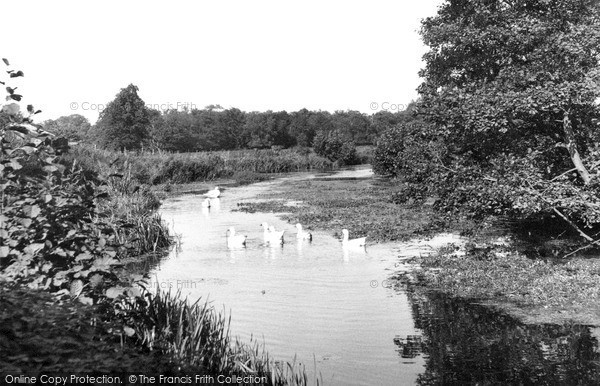Photo of North Walsham, Old Canal from Bactonwood Bridge c1955, ref. n42009