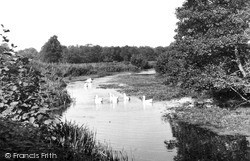 North Walsham, Old Canal From Bacton Wood Bridge c.1955