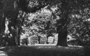 Northampton, Abington Park c.1955