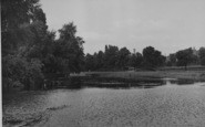 Northampton, Beckett's Park, The Lake c.1955