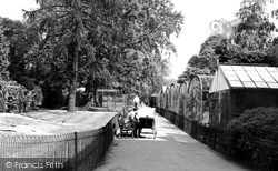 Northampton, The Aviary, Abington Park c.1955