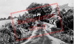 The Bridge c.1960, Northlew