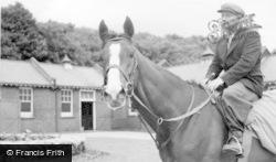 Norton, Horse At Highfield Stables c.1960, Norton-on-Derwent