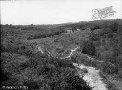 Nutley, Ashdown Forest 1928