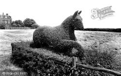 The Hawthorne Horse 1932, Oakham