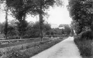 Ockham, 1904
