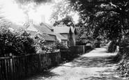 Ockham, Schools 1904