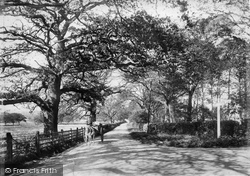 Dorking Road 1906, Ockley