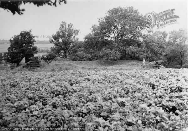 Photo of Ogilvie Castle, 1950