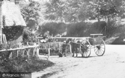 Old Basing, A Boy And A Horse Cart 1898